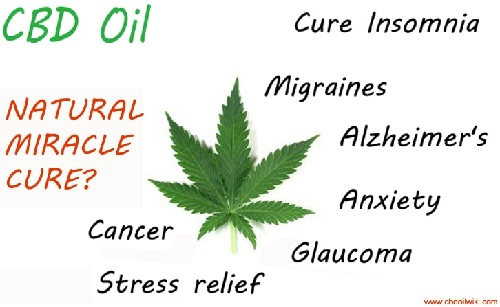 What Is CBD Oil ?