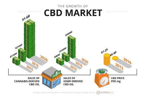 CBD and Hemp Oil Explained: Everything You Need to Know About Cannabidiol