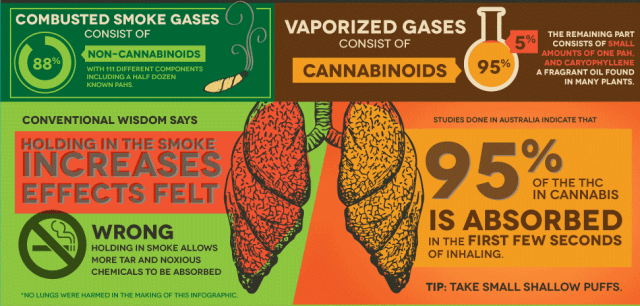 Is Vaporizing Cannabis Healthier And More Effective Than Smoking It?