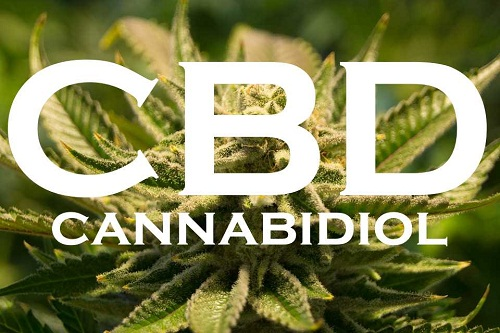 10 Things You Need to Know Before You Buy CBD Oil