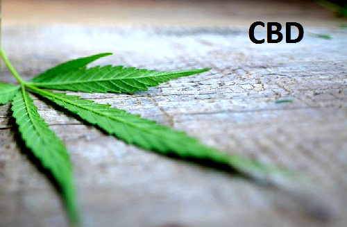 What Is CBD? And What Does CBD Oil Really Do?