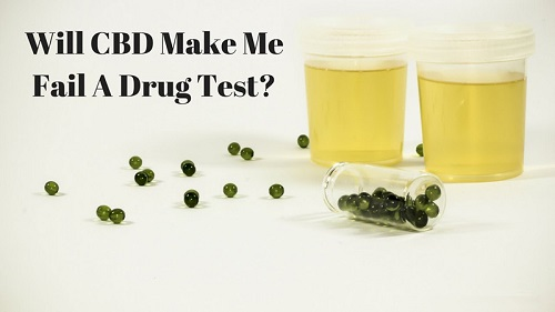 Does CBD Hemp Oil Cause Someone to Test Positive on a Drug Screen?