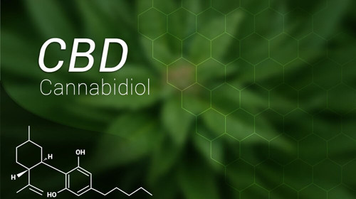 What is CBD and How Is It Used?