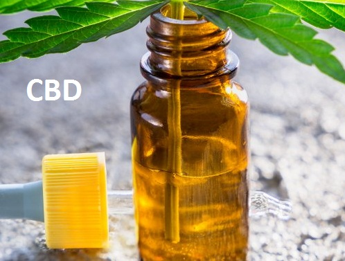 Does Cannabidiol (CBD) Get You High? Everything You Need to Know About This Latest Pain Reliever