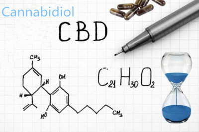 Cannabidiol (CBD) Hemp Oil: WADA Approved Eligible for Amateur and Professional Athletes