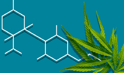 Cannabidiol – CBD – Market Growing Fast With Newest Uses and Applications Significantly Increasing Revenue Generating Potential