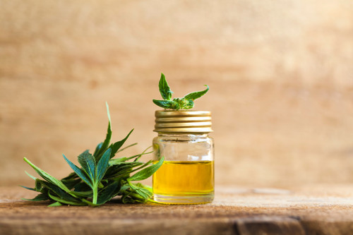 CBD Oil – Seven Benefits and Uses