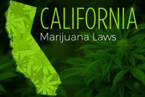 California Fires Up Online Licensing for Marijuana Industry